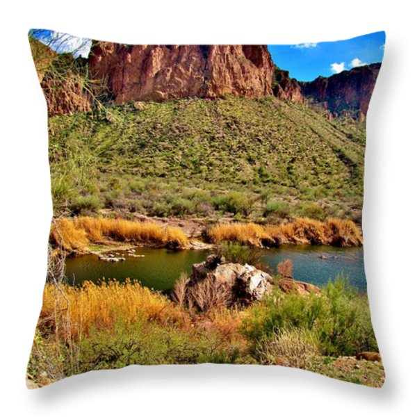 Arizona At Its' Best Throw Pillow by Marilyn Smith