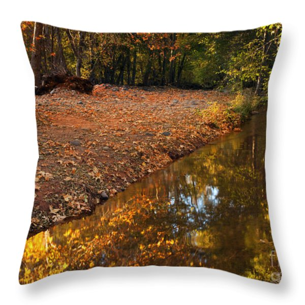 Arizona Autumn Reflections Throw Pillow by Mike  Dawson
