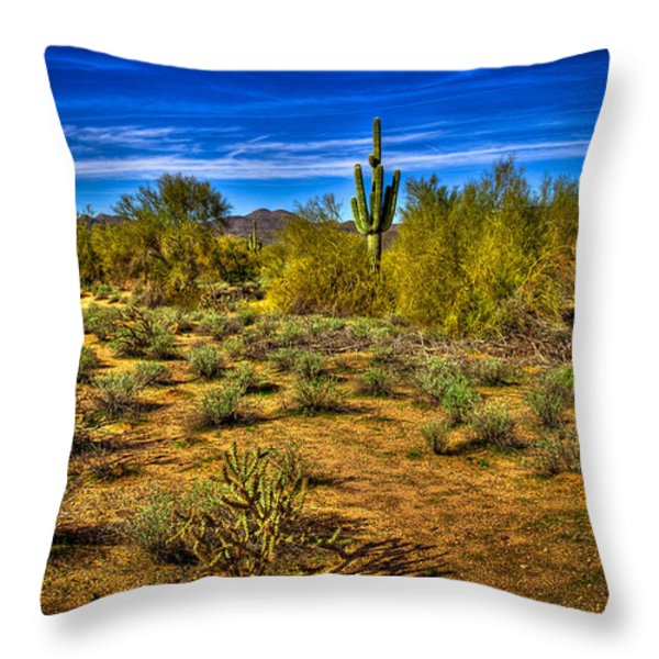 Arizona Landscape Iv Throw Pillow by David Patterson