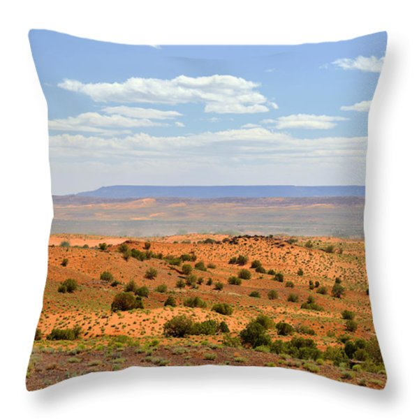 Arizona near Canyon de Chelly Throw Pillow by Christine Till