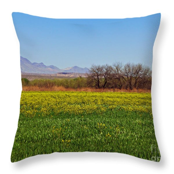 Arizona Spring Throw Pillow by Methune Hively