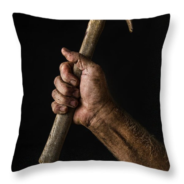 Arm and Hammer Throw Pillow by Diane Diederich