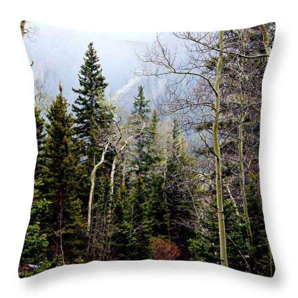 Around The Bend Throw Pillow by Barbara Chichester
