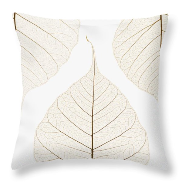 Arranged Leaves Throw Pillow by Kelly Redinger