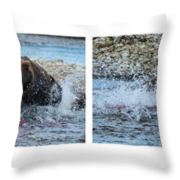 Art Of Catching Salmon  Throw Pillow by Dan Friend
