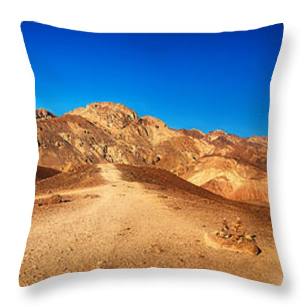 Artist Palette Pano Throw Pillow by Jane Rix