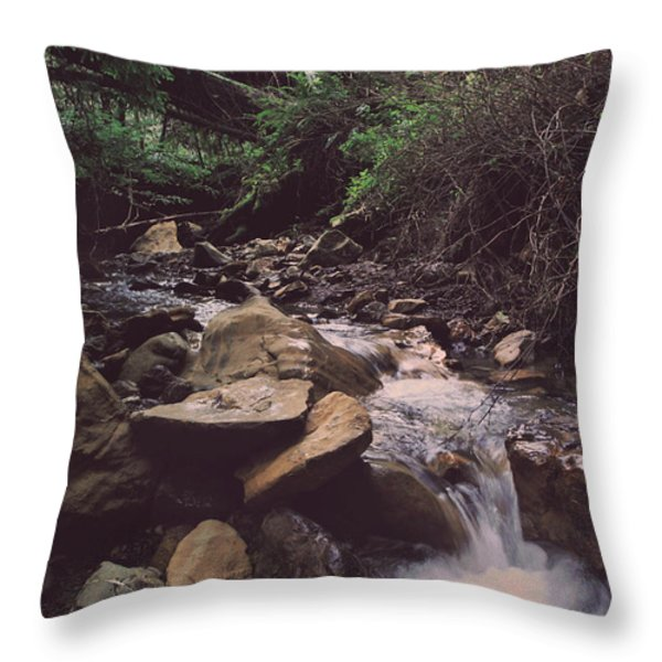 As Free As This Throw Pillow by Laurie Search