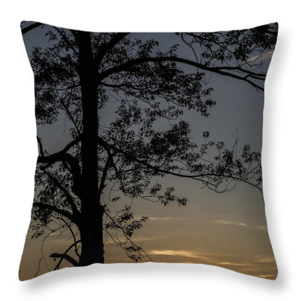 As The Sun Fades Behind The Mountian Throw Pillow by Karol  Livote
