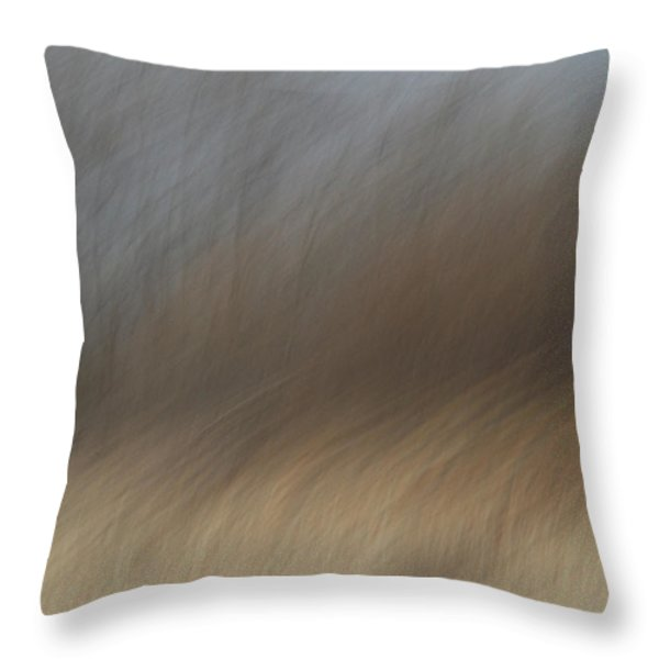 As The Wind Blows Throw Pillow by Karol  Livote
