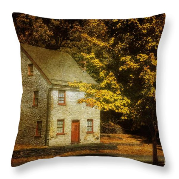 As The World Passes By Throw Pillow by Lois Bryan