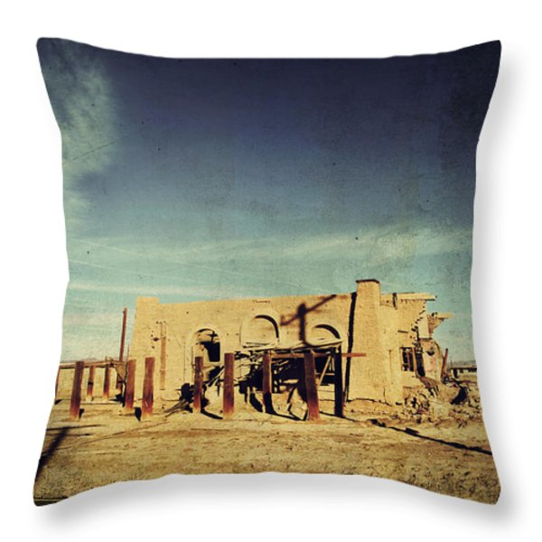 Ashes to Ashes Throw Pillow by Laurie Search