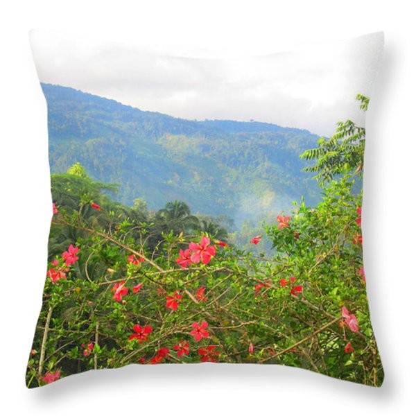 Asiatic Hibiscus Throw Pillow by Tina M Wenger