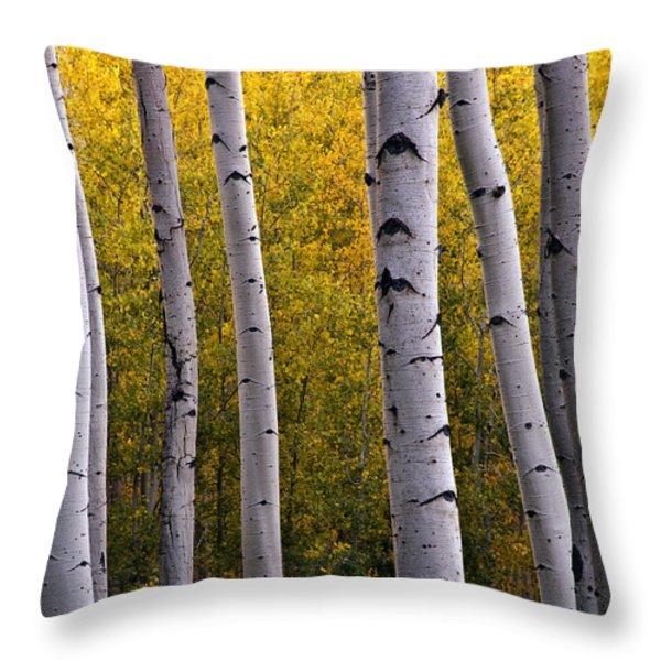 Aspen Light 2 Throw Pillow by Dave Dilli