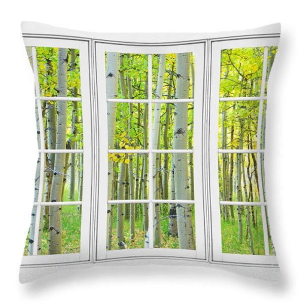 Aspen Tree Forest Autumn Time White Window View  Throw Pillow by James BO  Insogna