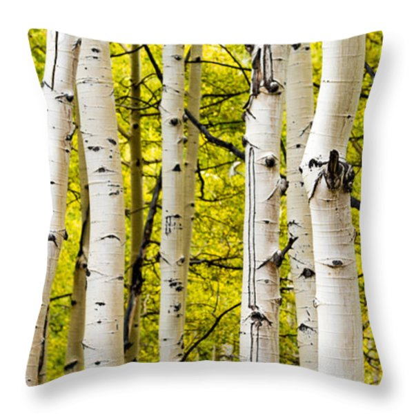 Aspens Throw Pillow by Chad Dutson