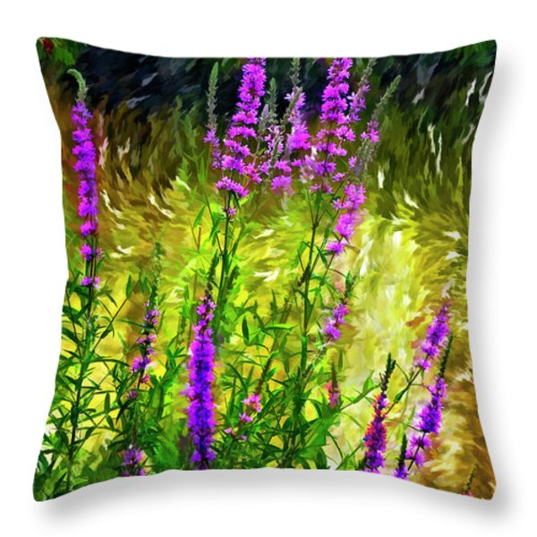 Aspirations Vignette Throw Pillow by Steve Harrington