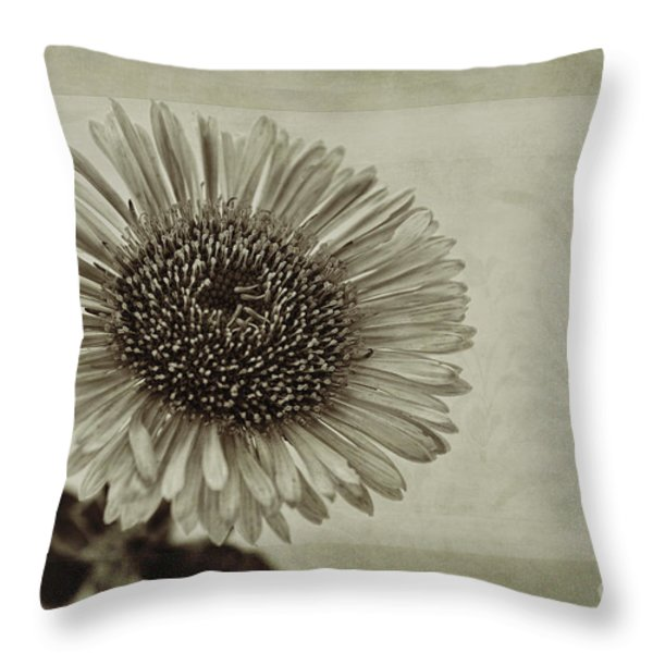 Aster With Textures Throw Pillow by John Edwards