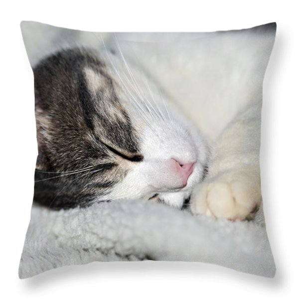 Astro Throw Pillow by Susan Leggett