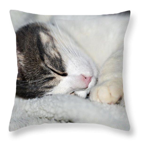 Astro Throw Pillow by Susan Leggett