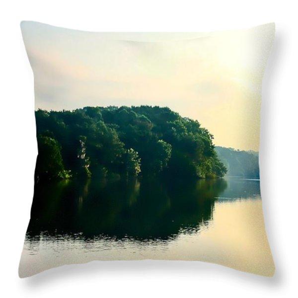 At Dawn  Throw Pillow by Debra Forand