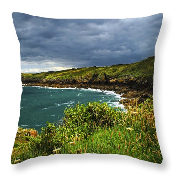 Atlantic Coast In Brittany Throw Pillow by Elena Elisseeva