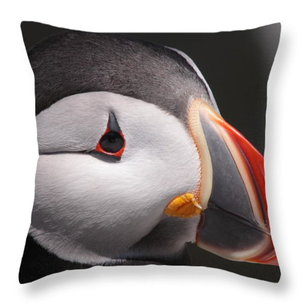 Atlantic Puffin Portrait Throw Pillow by Bruce J Robinson