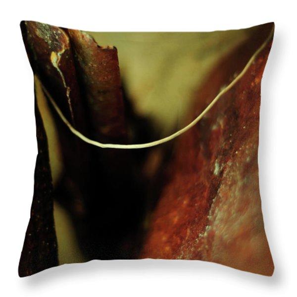 Atonement Throw Pillow by Rebecca Sherman