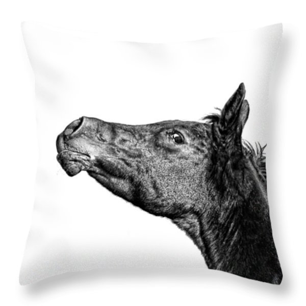 Attitude Throw Pillow by Karen Slagle