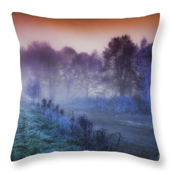 Aurora Throw Pillow by Mo T