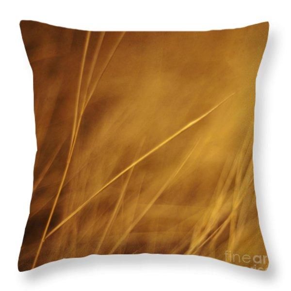 aurum Throw Pillow by Priska Wettstein