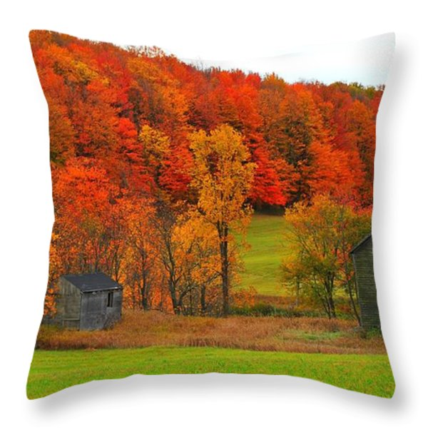 Autumn Abandoned Throw Pillow by Terri Gostola
