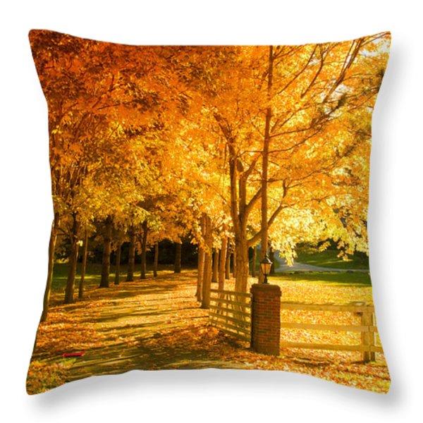 Autumn Alley Throw Pillow by Alexey Stiop