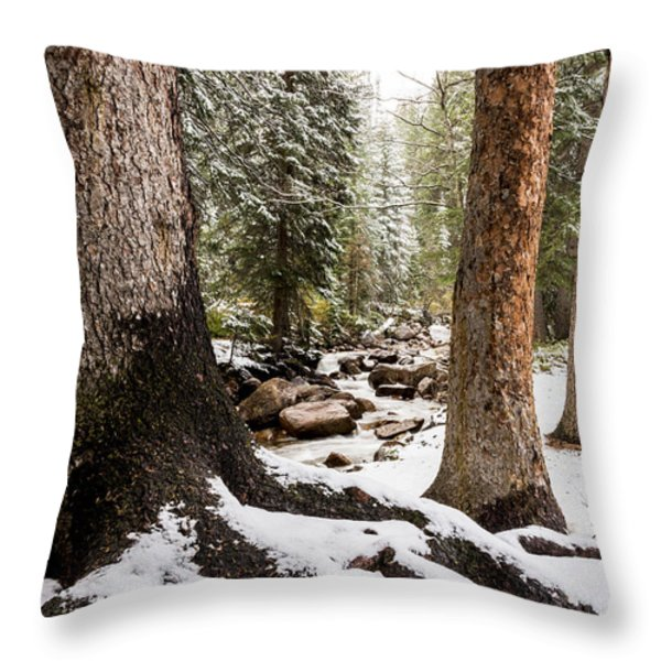 Autumn At Gore Creek 5 - Vail Colorado Throw Pillow by Brian Harig