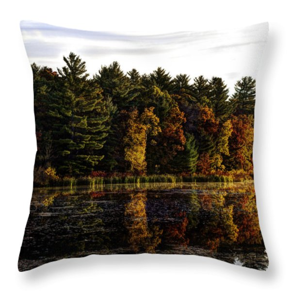 Autumn At It's Finest 2 Throw Pillow by Thomas Young