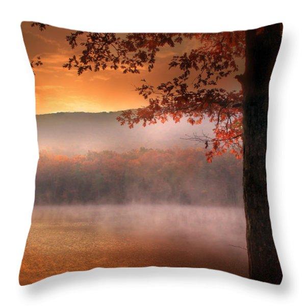 Autumn Atmosphere Throw Pillow by Lori Deiter