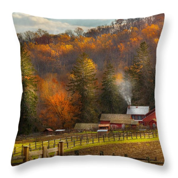 Autumn - Barn - The end of a season Throw Pillow by Mike Savad