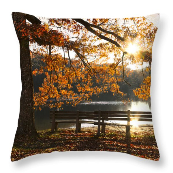 Autumn Beauty Throw Pillow by Debra and Dave Vanderlaan