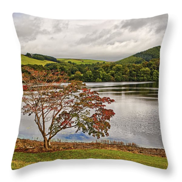 Autumn Beauty Throw Pillow by Marcia Colelli
