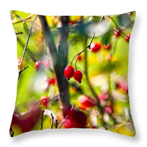 autumn berries  Throw Pillow by Stylianos Kleanthous