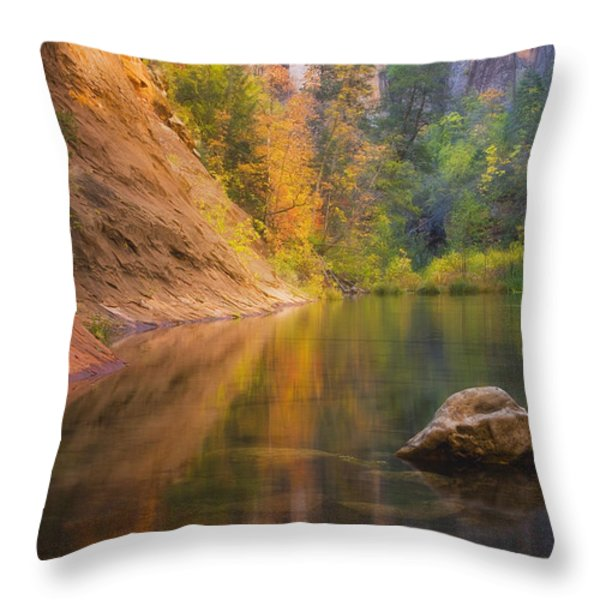 Autumn Bliss Throw Pillow by Peter Coskun