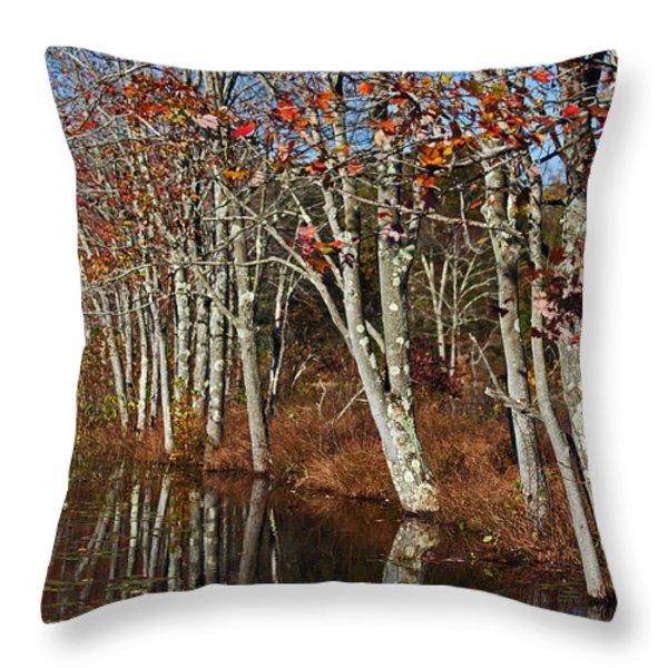 Autumn Blue Throw Pillow by Karol  Livote