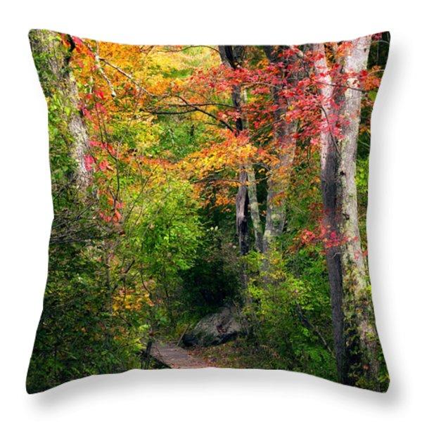 Autumn Boardwalk Throw Pillow by Bill  Wakeley