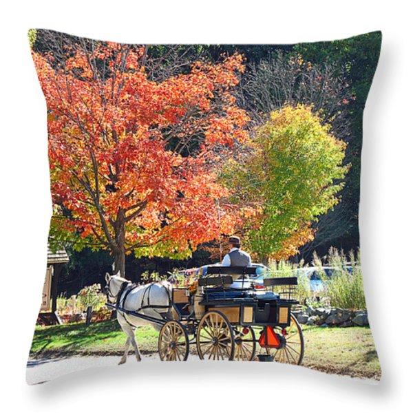 Autumn Carriage Ride Throw Pillow by Barbara McDevitt