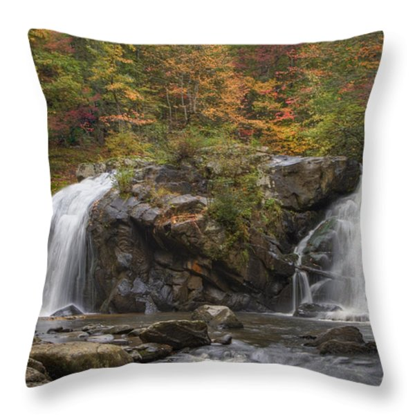 Autumn Cascades Throw Pillow by Debra and Dave Vanderlaan