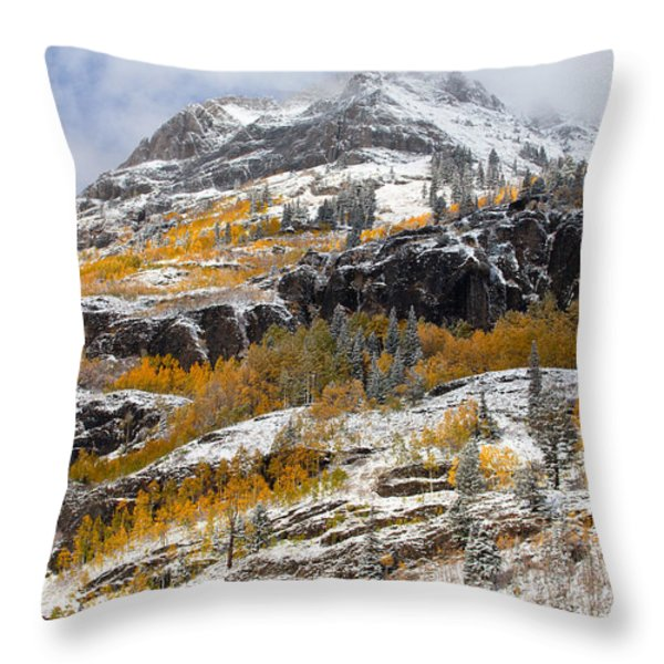 Autumn Clearning Throw Pillow by Darren  White