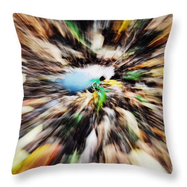 Autumn Colors Throw Pillow by Paul Ward