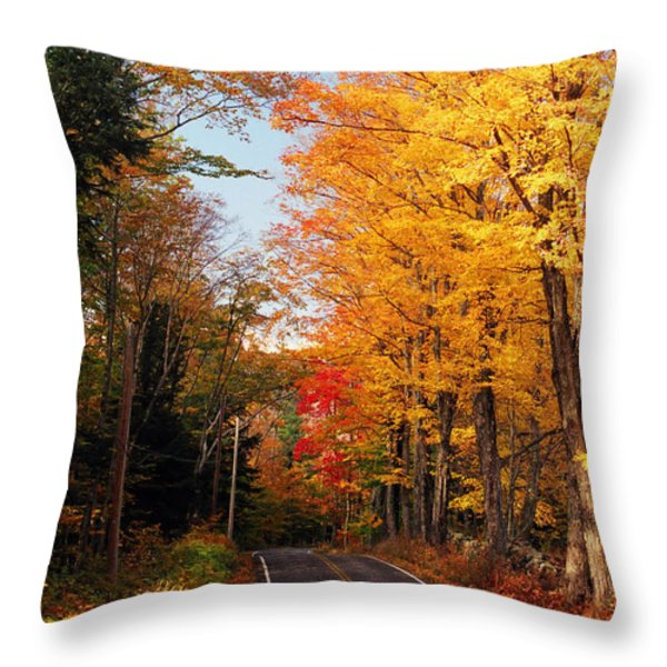 Autumn Country Road Throw Pillow by Joann Vitali