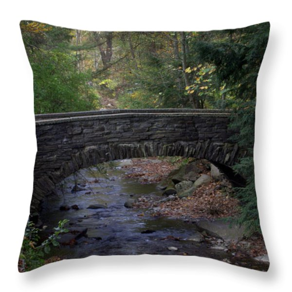 Autumn Creek Throw Pillow by J Allen