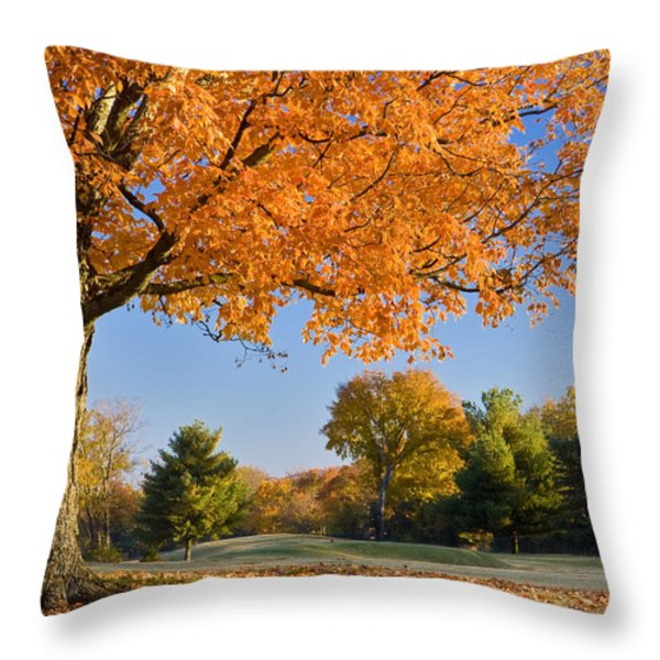 Autumn Dawn Throw Pillow by Brian Jannsen