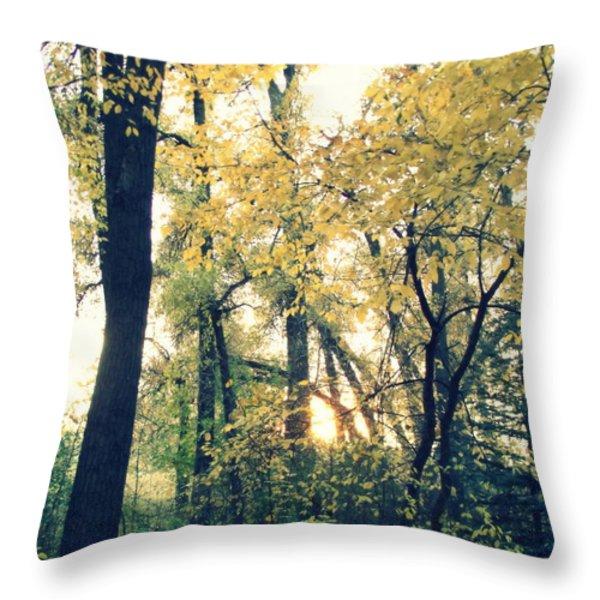 Autumn Evening Throw Pillow by Jessica Myscofski